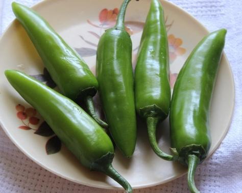 take-4-5-fresh-bhavnagri-chillies